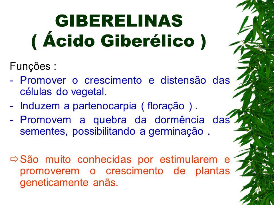 GIBERELINAS ( Ácido Giberélico )