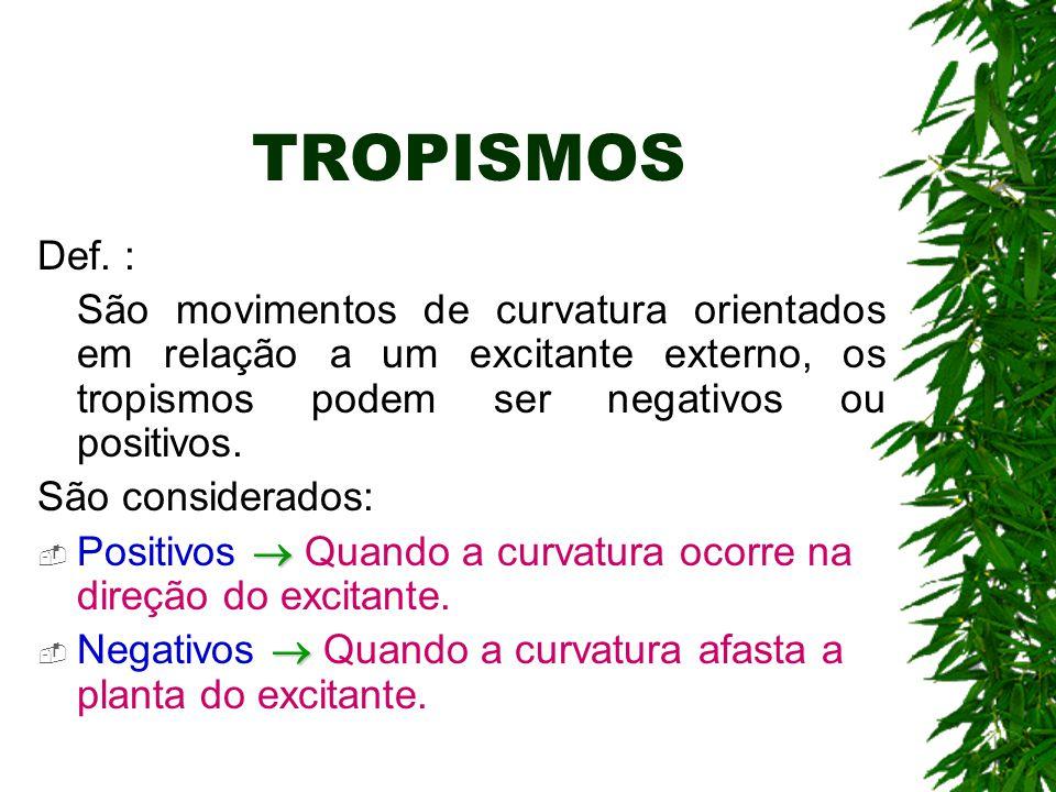 TROPISMOS Def. : São movimentos de curvatura orientados em relação a um excitante externo, os tropismos podem ser negativos ou positivos.