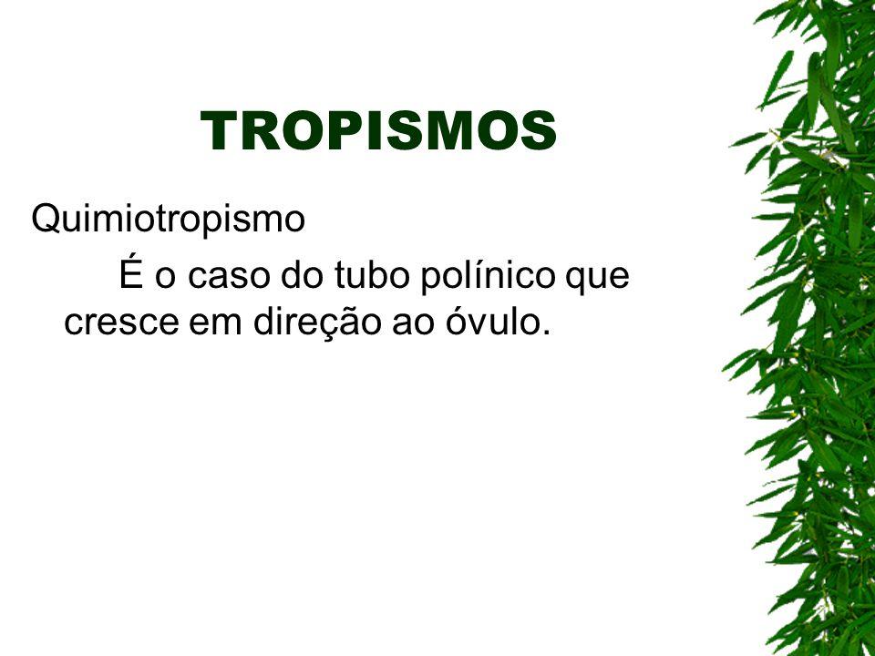 TROPISMOS Quimiotropismo