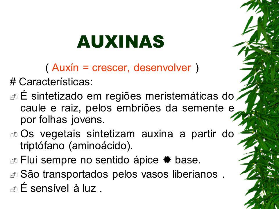 ( Auxín = crescer, desenvolver )