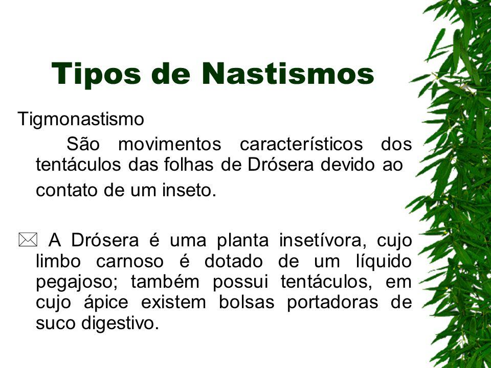 Tipos de Nastismos Tigmonastismo