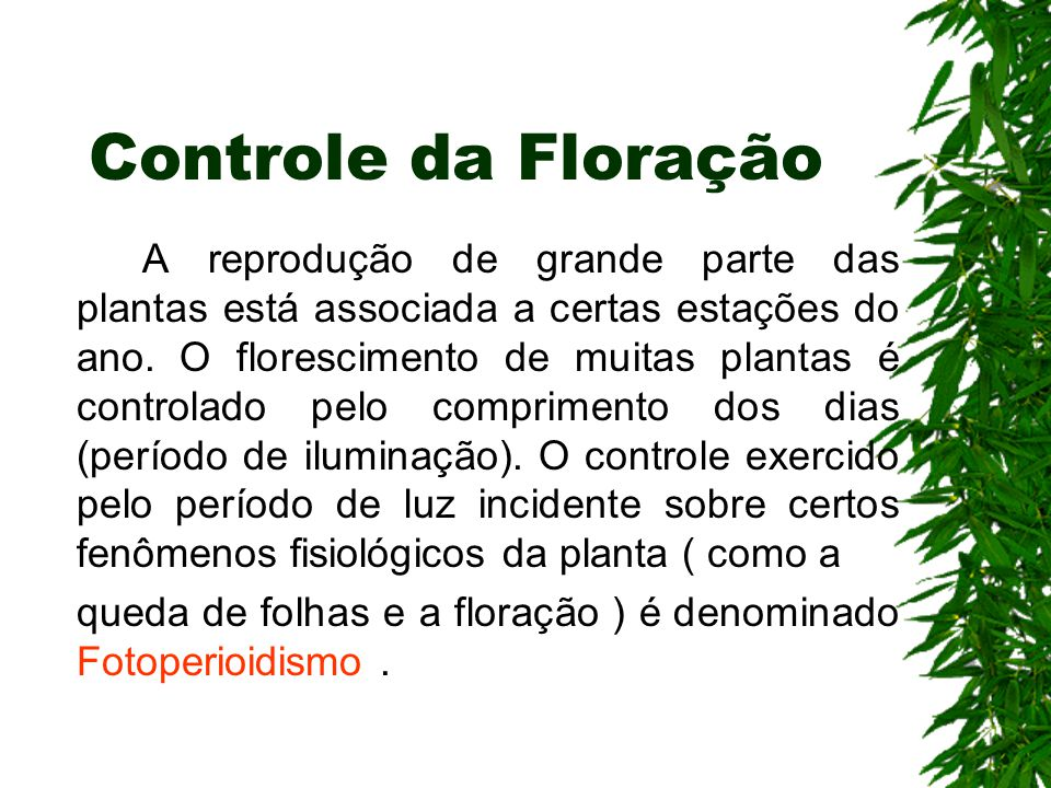 Controle da Floração