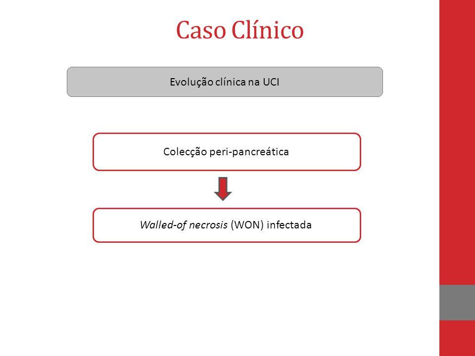 Caso Clínico Evolução clínica na UCI Colecção peri-pancreática