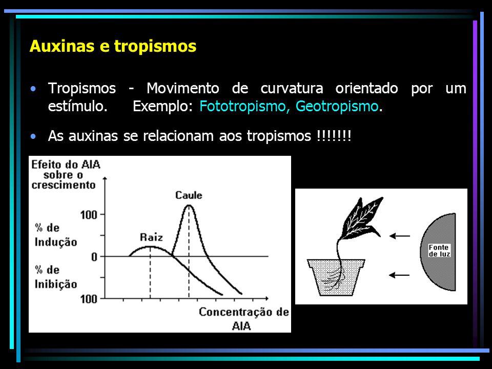 Auxinas e tropismos Tropismos - Movimento de curvatura orientado por um estímulo. Exemplo: Fototropismo, Geotropismo.