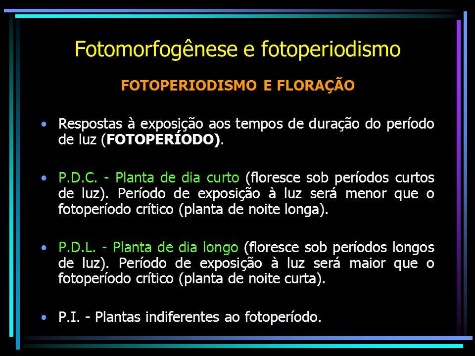 Fotomorfogênese e fotoperiodismo