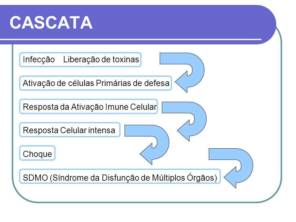 CASCATA Infecção Liberação de toxinas