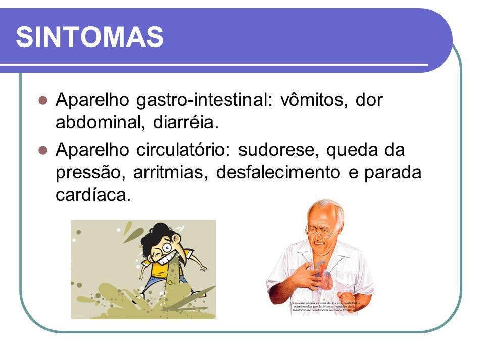 SINTOMAS Aparelho gastro-intestinal: vômitos, dor abdominal, diarréia.