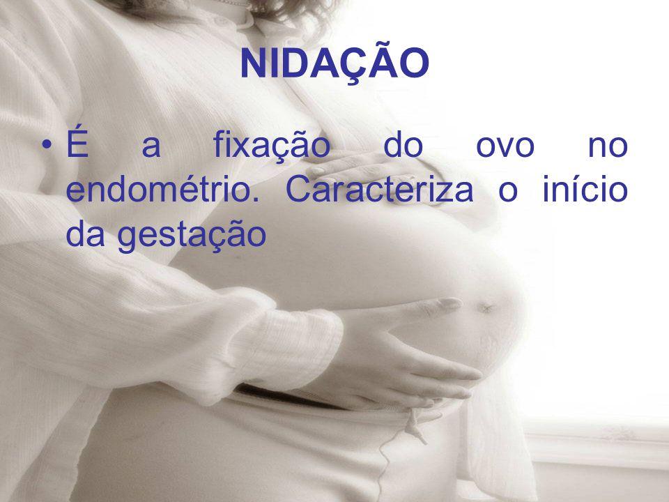 NIDAÇÃO É a fixação do ovo no endométrio. Caracteriza o início da gestação