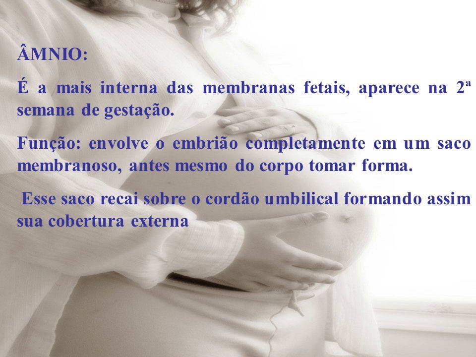 ÂMNIO: É a mais interna das membranas fetais, aparece na 2ª semana de gestação.