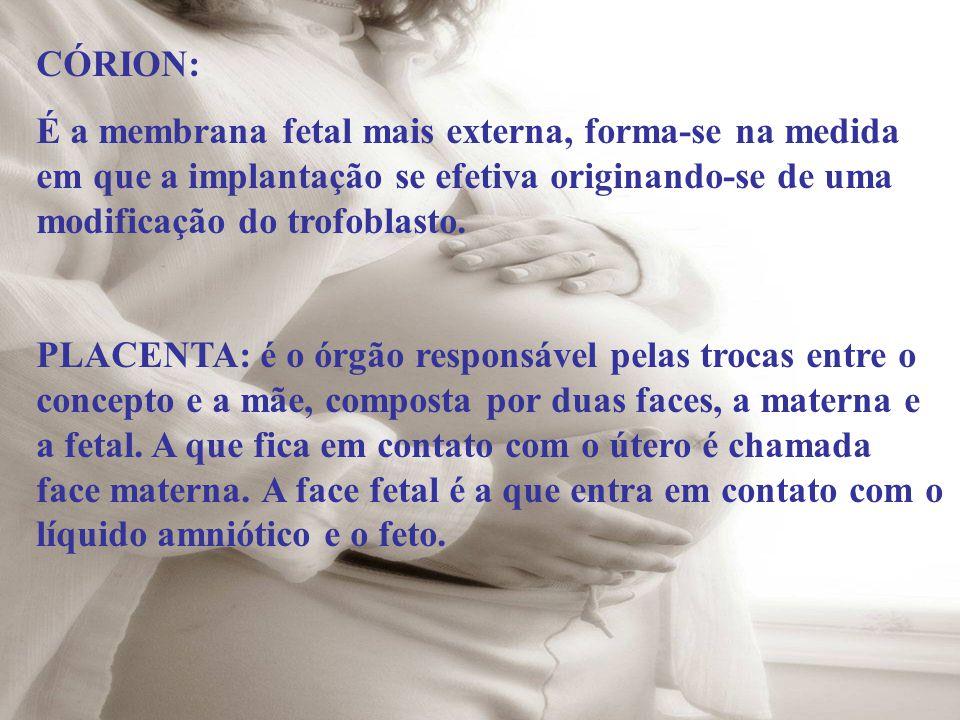CÓRION: É a membrana fetal mais externa, forma-se na medida em que a implantação se efetiva originando-se de uma modificação do trofoblasto.