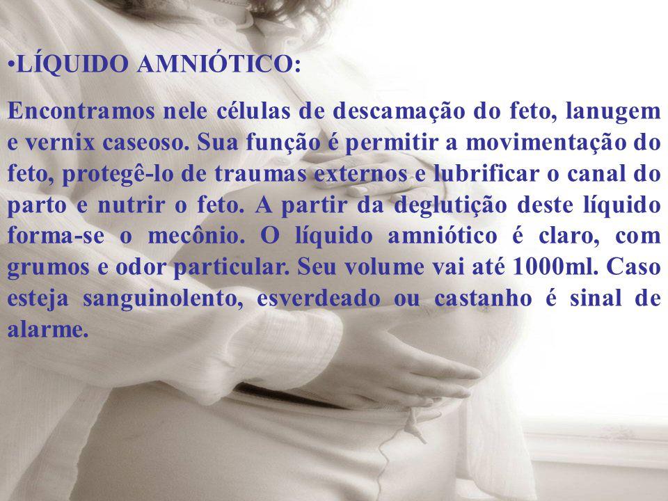 LÍQUIDO AMNIÓTICO: