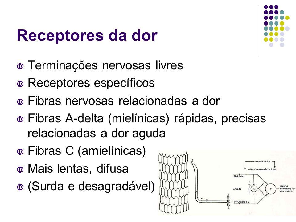 Receptores da dor Terminações nervosas livres Receptores específicos