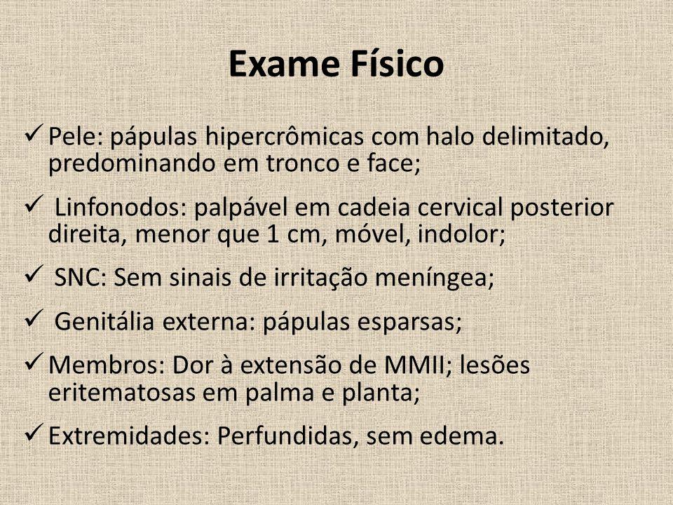 Exame Físico Pele: pápulas hipercrômicas com halo delimitado, predominando em tronco e face;