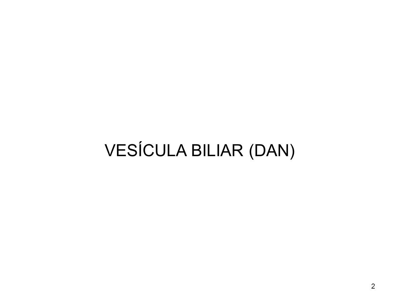 VESÍCULA BILIAR (DAN)