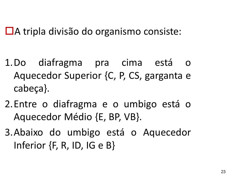 A tripla divisão do organismo consiste: