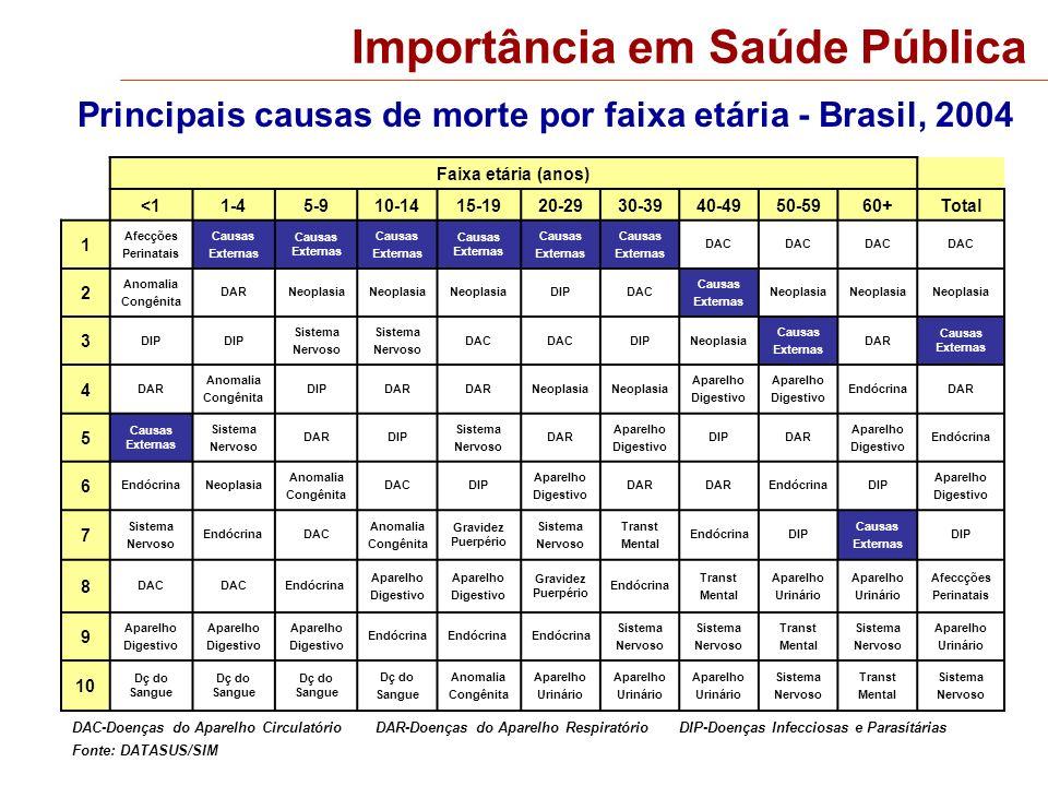 Principais causas de morte por faixa etária - Brasil, 2004