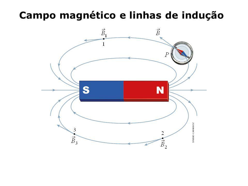 Campo magnético e linhas de indução