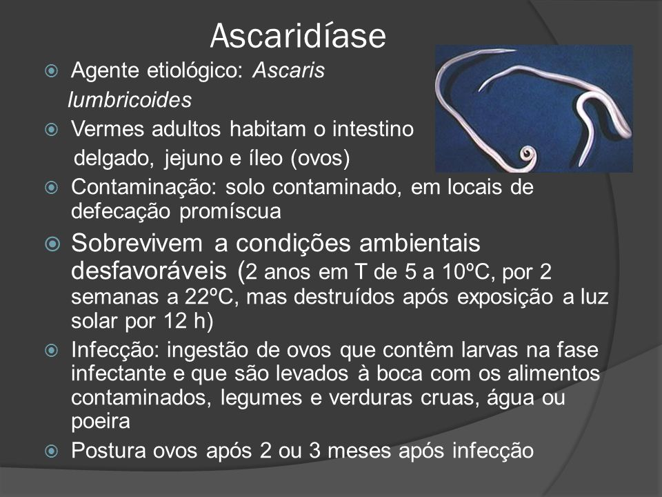 Ascaridíase Agente etiológico: Ascaris. lumbricoides. Vermes adultos habitam o intestino. delgado, jejuno e íleo (ovos)