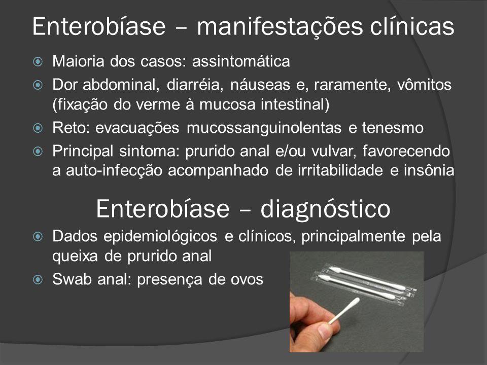 Enterobíase – manifestações clínicas