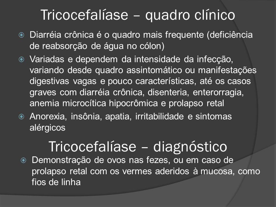 Tricocefalíase – quadro clínico