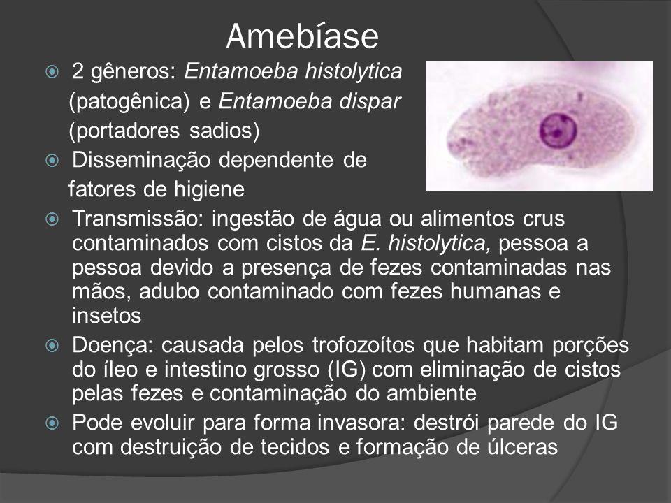 Amebíase 2 gêneros: Entamoeba histolytica