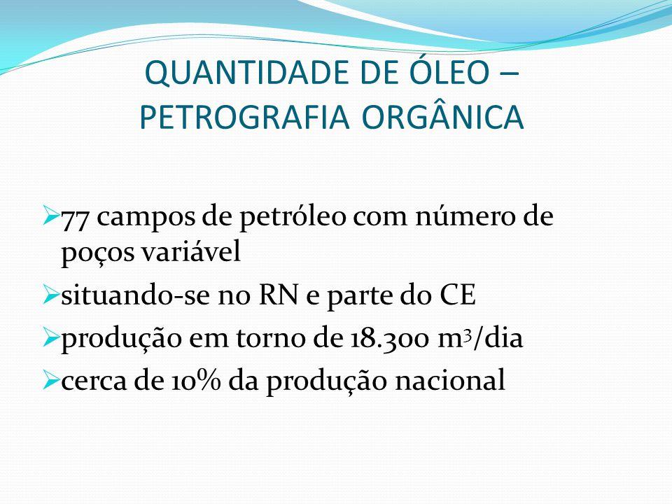 QUANTIDADE DE ÓLEO – PETROGRAFIA ORGÂNICA