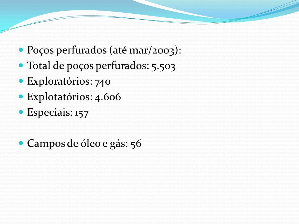 Poços perfurados (até mar/2003):