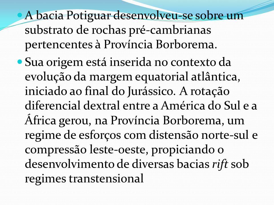 A bacia Potiguar desenvolveu-se sobre um substrato de rochas pré-cambrianas pertencentes à Província Borborema.