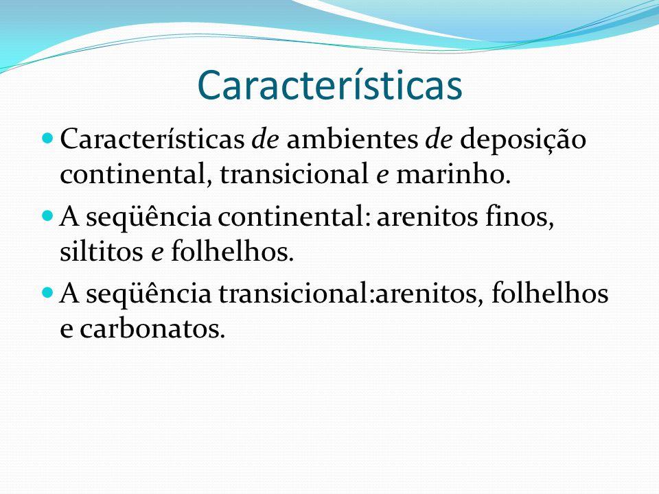 Características Características de ambientes de deposição continental, transicional e marinho.