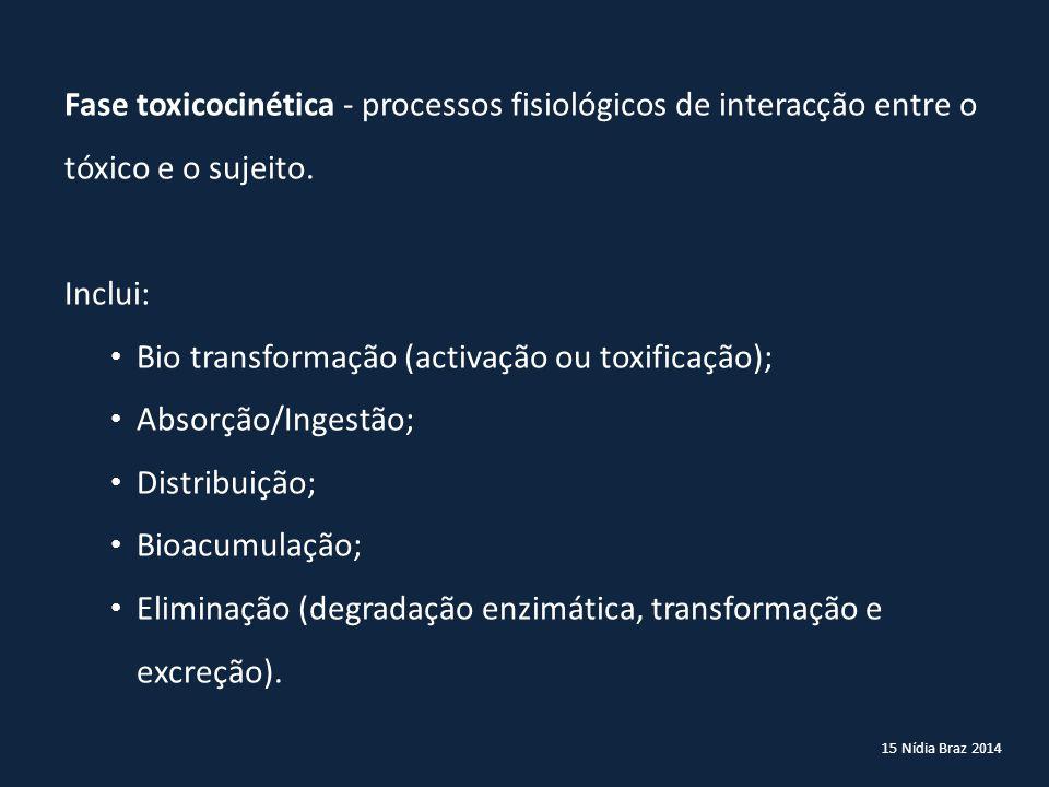Bio transformação (activação ou toxificação); Absorção/Ingestão;