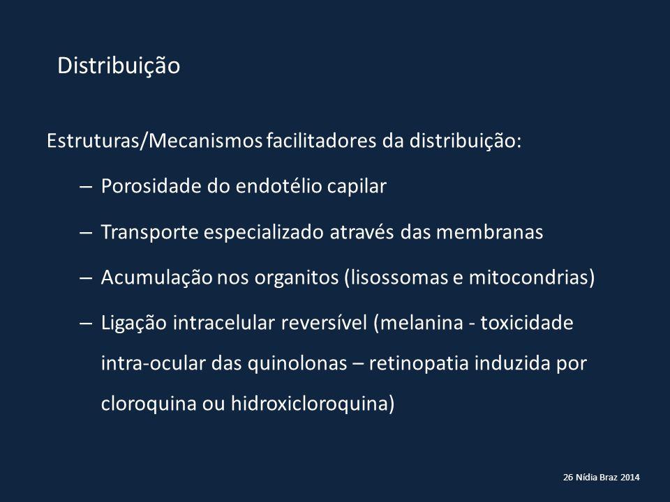 Distribuição Estruturas/Mecanismos facilitadores da distribuição: