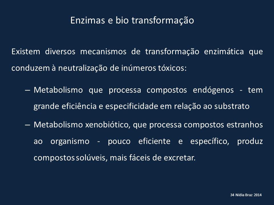 Enzimas e bio transformação