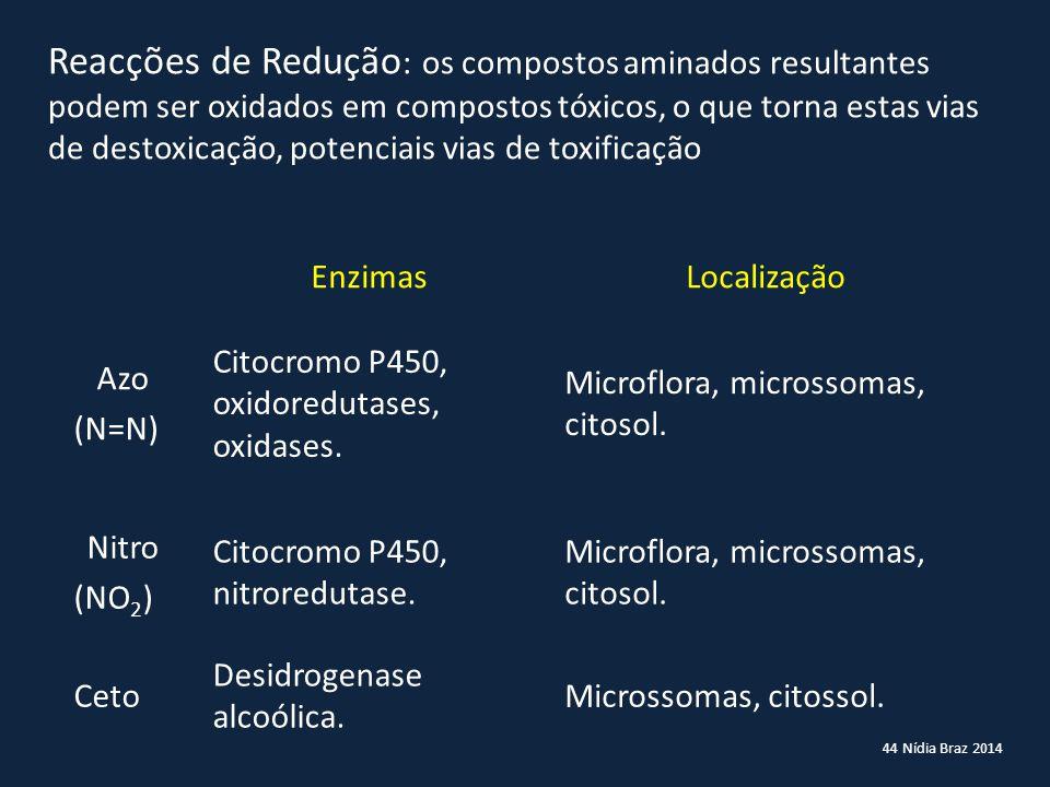 Reacções de Redução: os compostos aminados resultantes podem ser oxidados em compostos tóxicos, o que torna estas vias de destoxicação, potenciais vias de toxificação