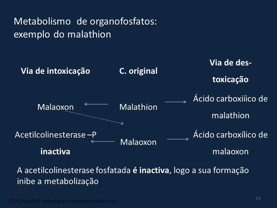 Metabolismo de organofosfatos: exemplo do malathion