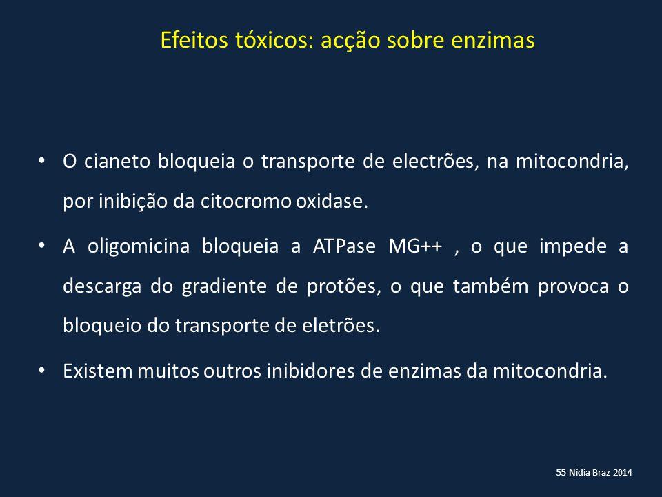 Efeitos tóxicos: acção sobre enzimas