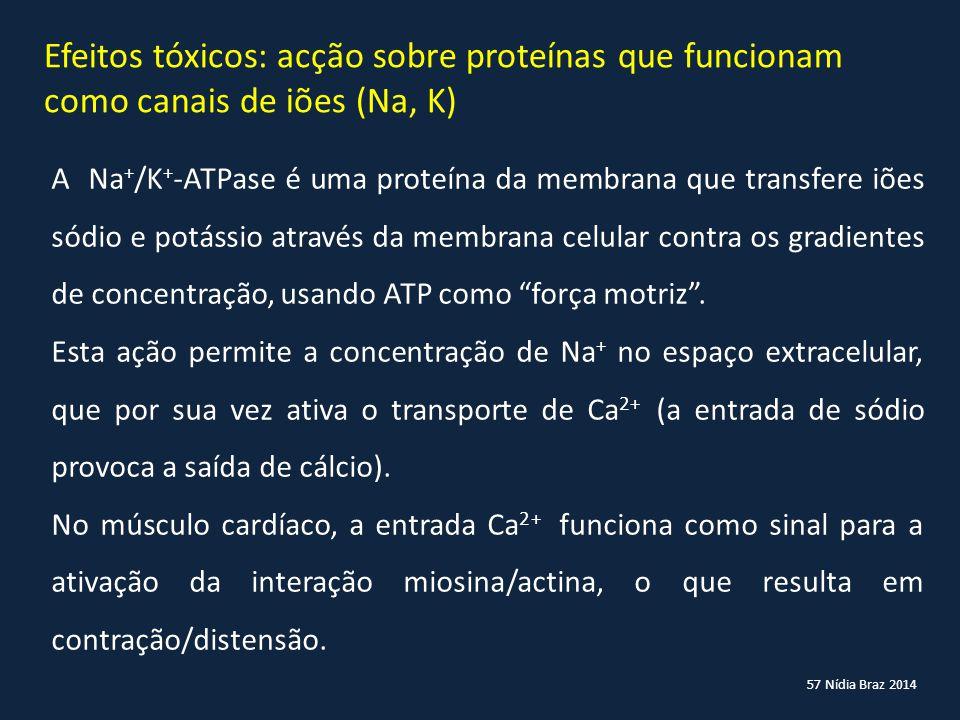 Efeitos tóxicos: acção sobre proteínas que funcionam como canais de iões (Na, K)