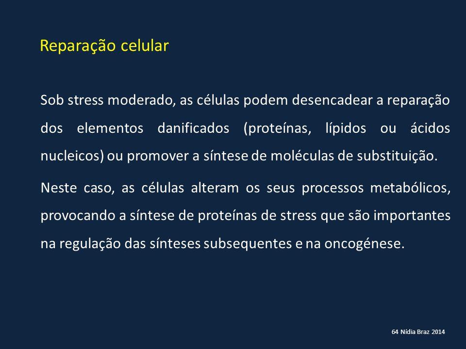 Reparação celular