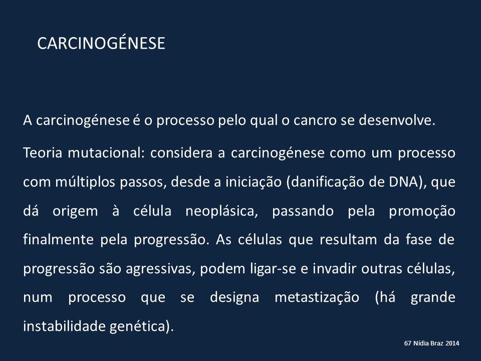 CARCINOGÉNESE A carcinogénese é o processo pelo qual o cancro se desenvolve.