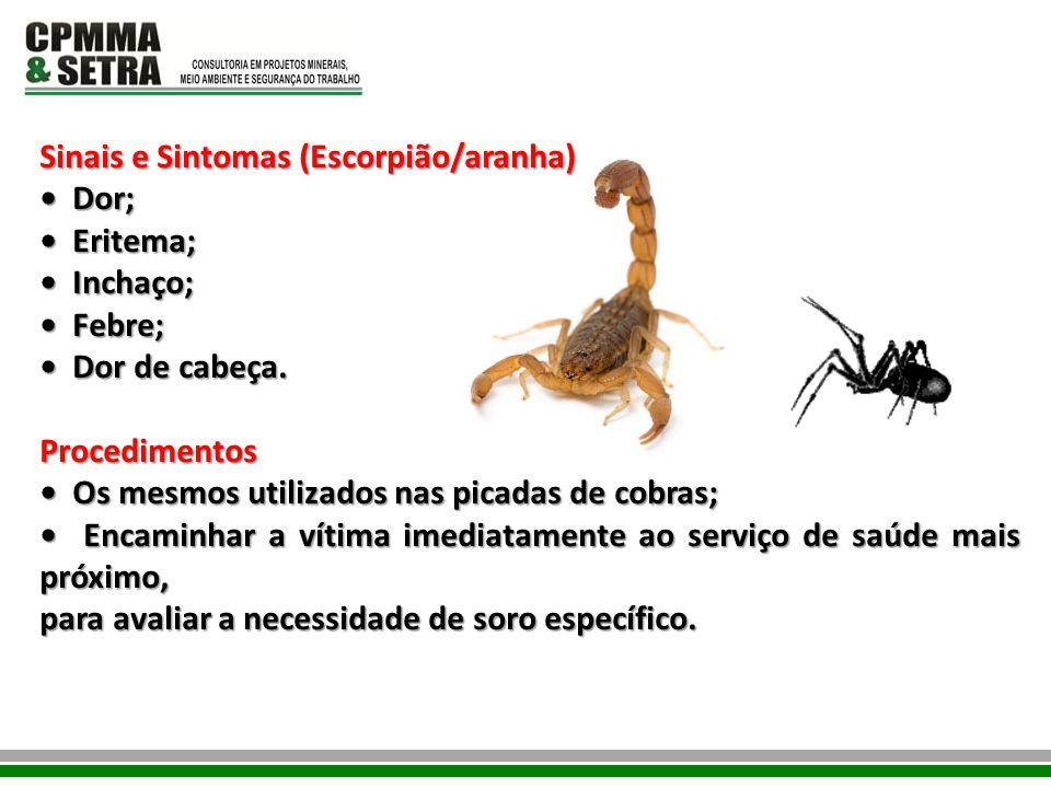 Sinais e Sintomas (Escorpião/aranha)