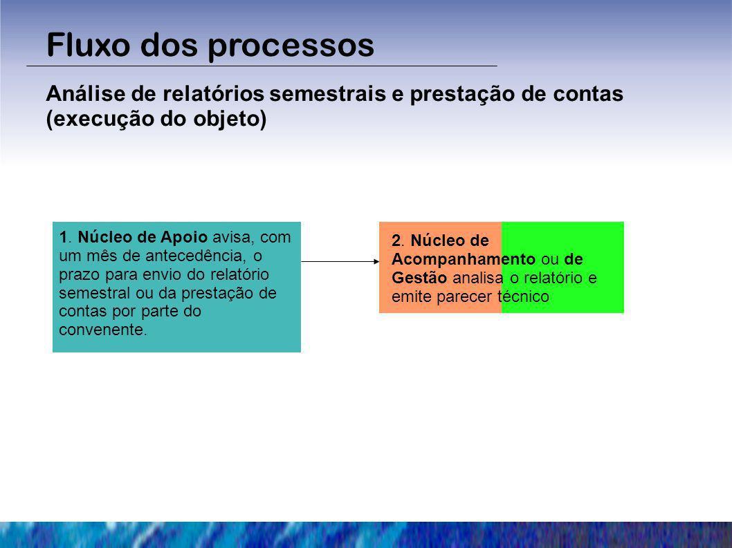 Fluxo dos processos Análise de relatórios semestrais e prestação de contas (execução do objeto)