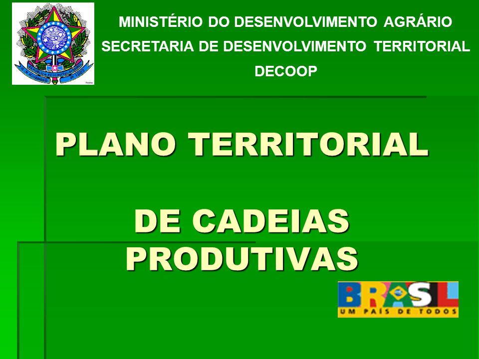 PLANO TERRITORIAL DE CADEIAS PRODUTIVAS