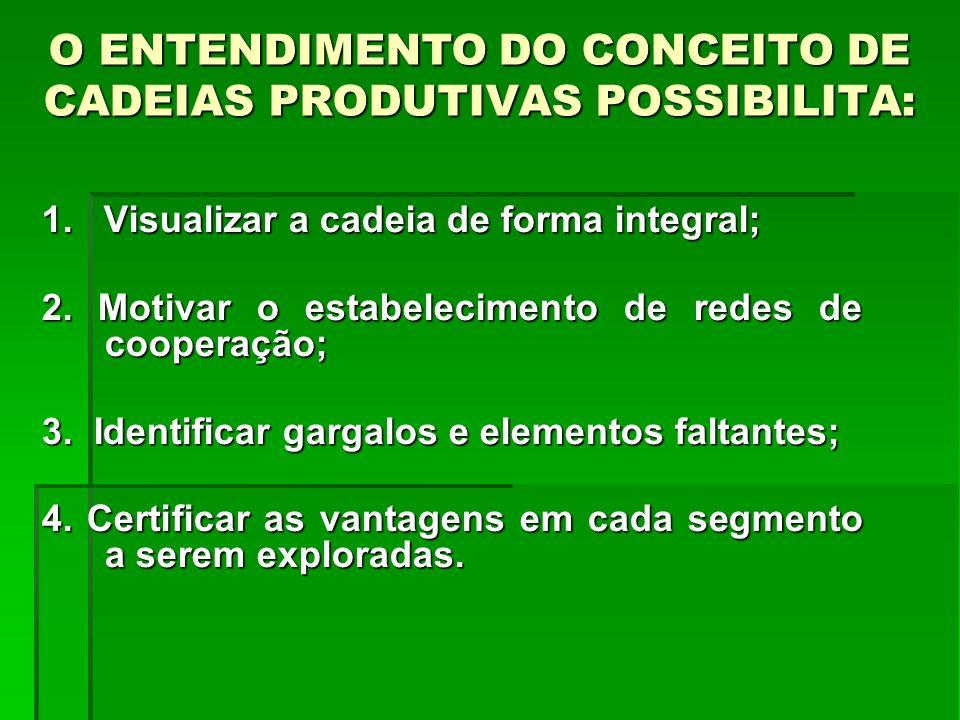 O ENTENDIMENTO DO CONCEITO DE CADEIAS PRODUTIVAS POSSIBILITA: