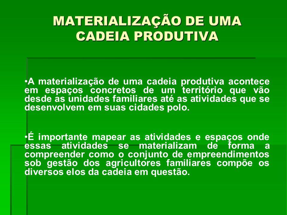 MATERIALIZAÇÃO DE UMA CADEIA PRODUTIVA