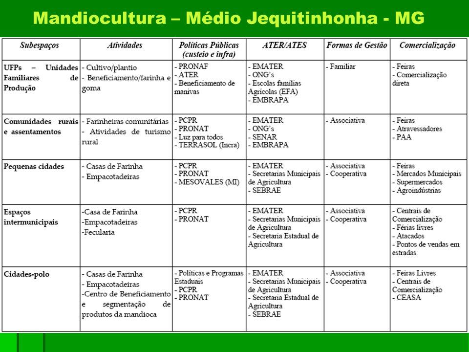 Mandiocultura – Médio Jequitinhonha - MG