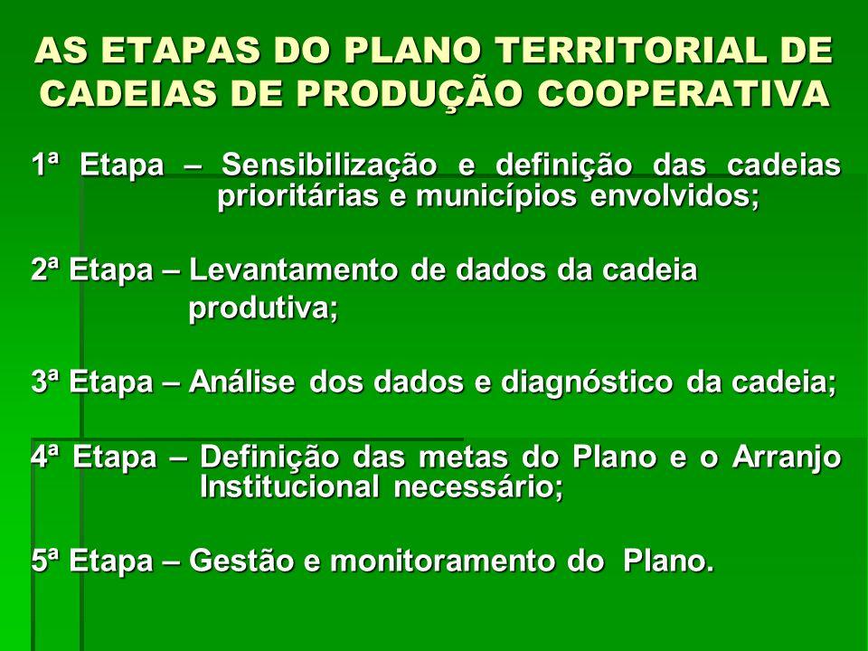 AS ETAPAS DO PLANO TERRITORIAL DE CADEIAS DE PRODUÇÃO COOPERATIVA