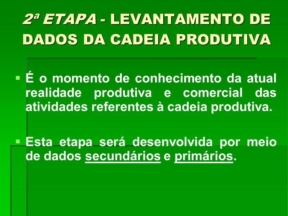 2ª ETAPA - LEVANTAMENTO DE DADOS DA CADEIA PRODUTIVA