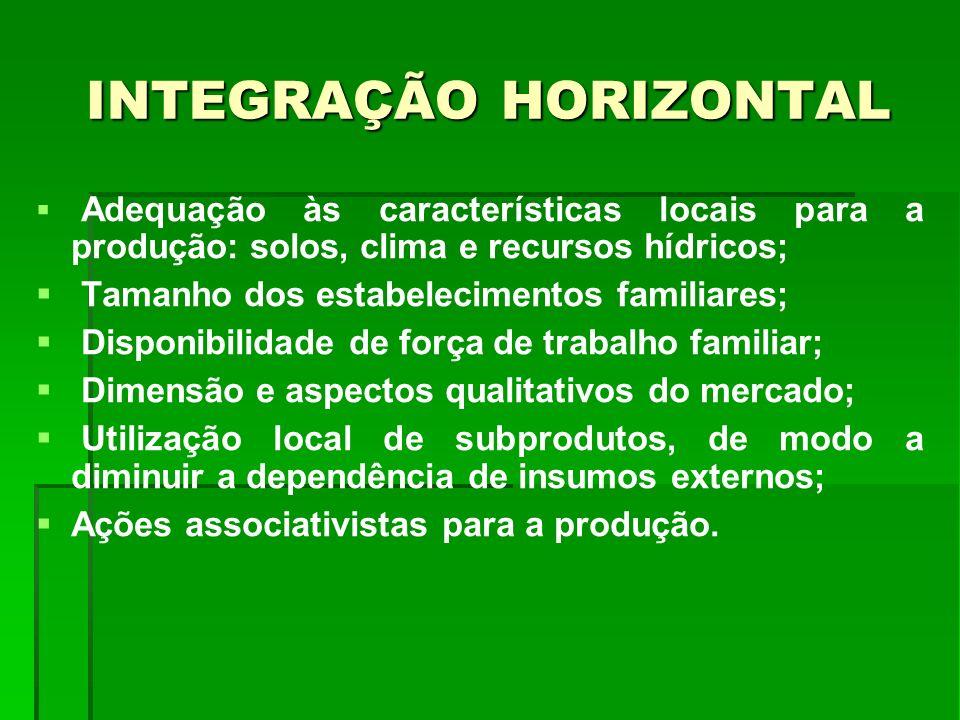 INTEGRAÇÃO HORIZONTAL