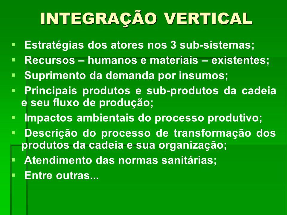 INTEGRAÇÃO VERTICAL Estratégias dos atores nos 3 sub-sistemas;