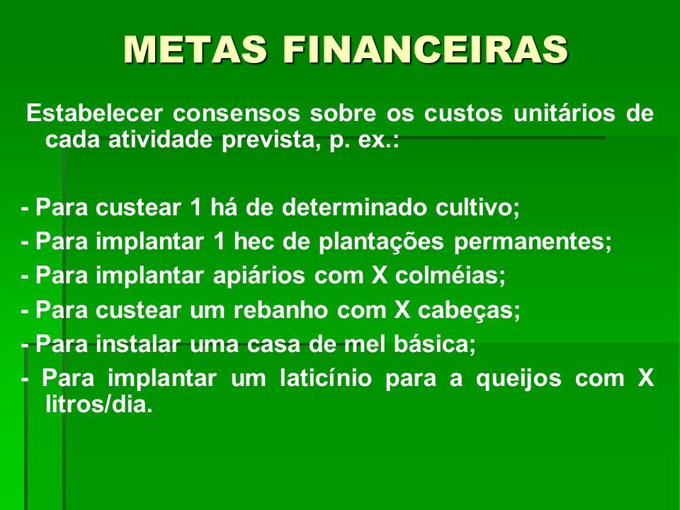 METAS FINANCEIRAS - Para custear 1 há de determinado cultivo;