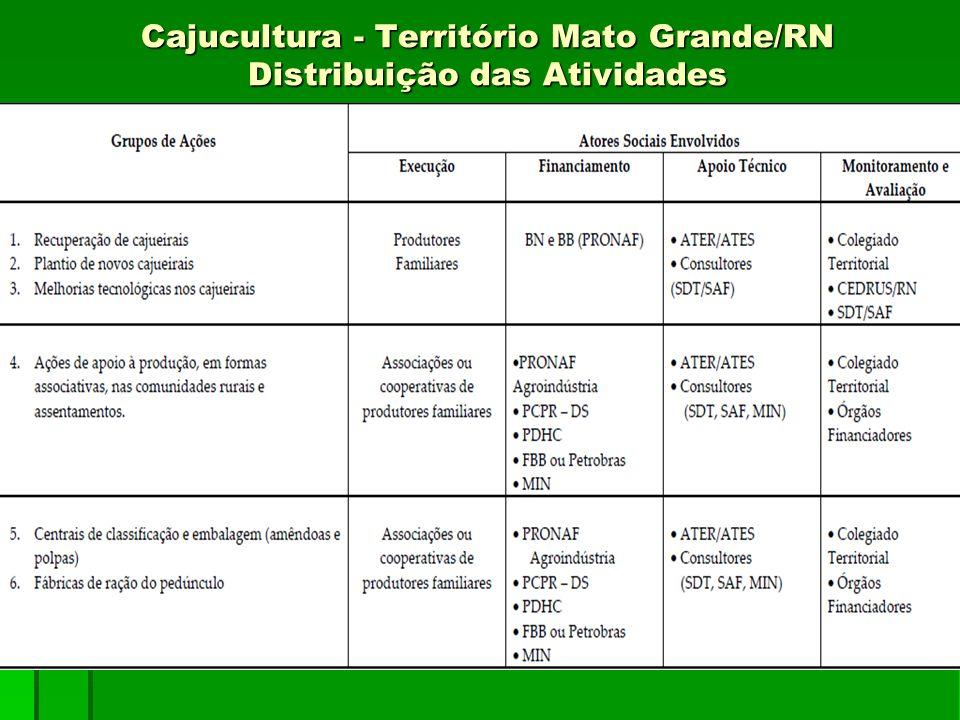 Cajucultura - Território Mato Grande/RN Distribuição das Atividades